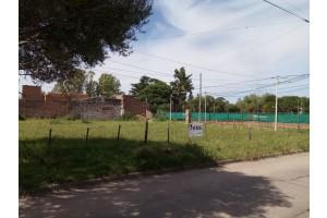 Terrenos Prudencio Gonzalez y Valentini (Trocha)
